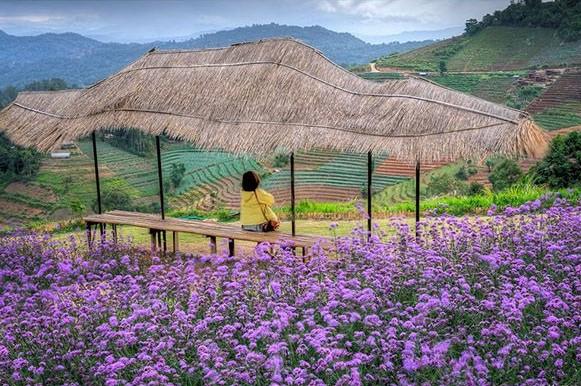 Chiangmai-mon-jam