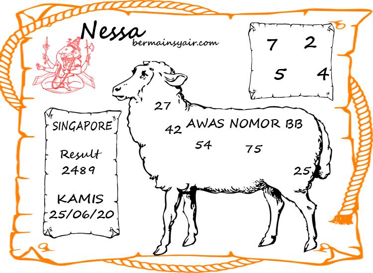 NESA-SYAIR-SGP