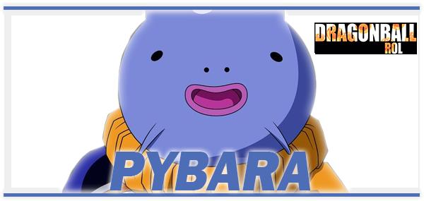 Mecánica del Gran Jefe Pybara Pybara