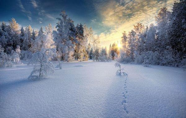winter photographs 23
