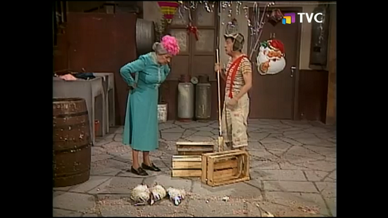 barriendo-el-patio-1984-tvc.png