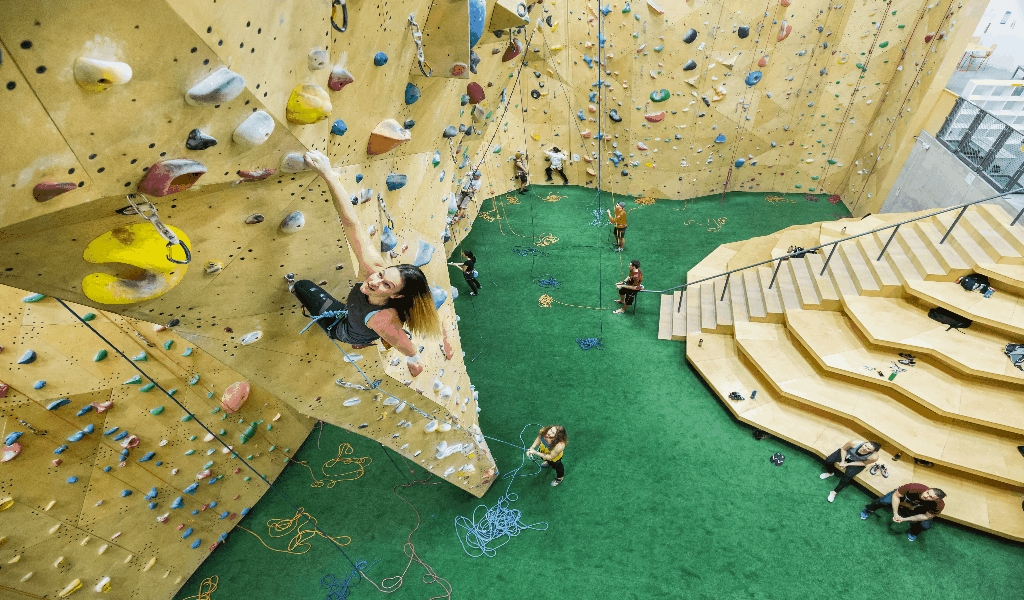 Olympic Climbing Athletes