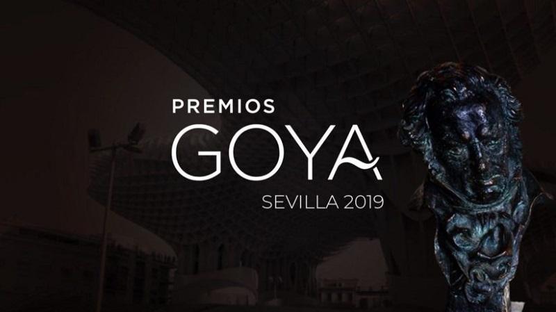 descargar Ceremonia de los Premios Goya (2019)[SatRip][Castellano][VS] gratis