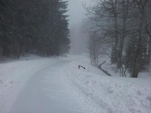 Nevídané arktické počasí koncem dubna v Rychlebských horách. Protažená silnice ze Starého města až k lanové dráze na paprsek 19. dubna 2017. Dále už všude půl metru sněhu, sněží a mrzne nepřetržitě 24 hodin. Na paprsek se nedalo na běžkách ani pěšky v těch obrovských závějích dojít. Lanovka stála.