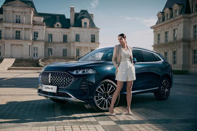 [Actualité] Groupe Great Wall Motors - Page 8 6-C9-FFCAE-BF59-436-D-AE54-1-AEE1-F47060-B
