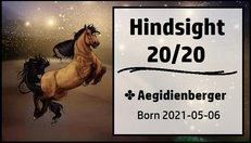 Hindsight_2020.jpg