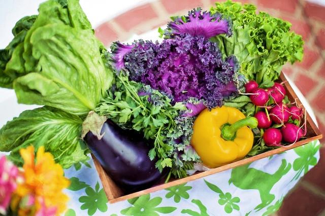 https://i.ibb.co/0FyPpnr/vegetables-790022-960-720.jpg