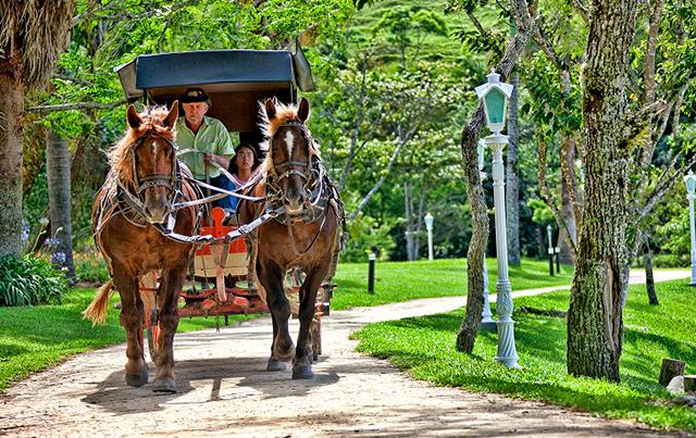 Fazzenda-Parque-Hotel-4-Divulga-o