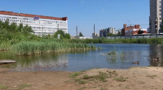 Жители Невского района требуют от Гульчука решить проблему золоотвала