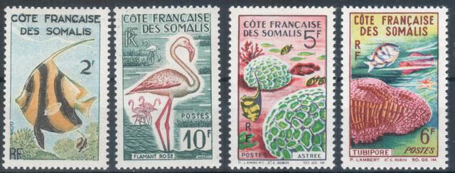 Cote-Somalis-Fauna