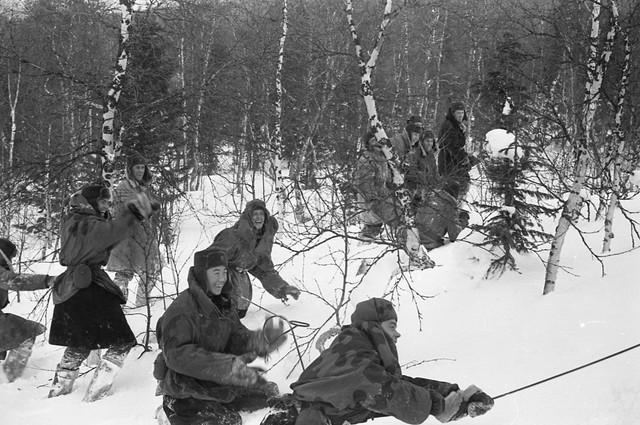 Dyatlov pass 1959 search 68