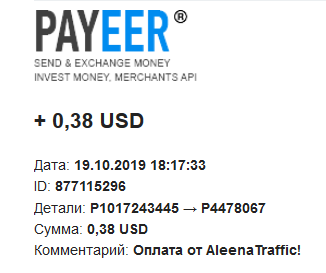 2nd-aleenatraffic-payment.png