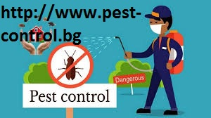 http://www.pest-control.bg -The house and The office can be assaulted by fleas of different sorts.
