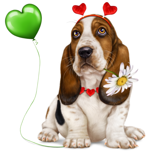 lonely-heart-basset-hound-2.png
