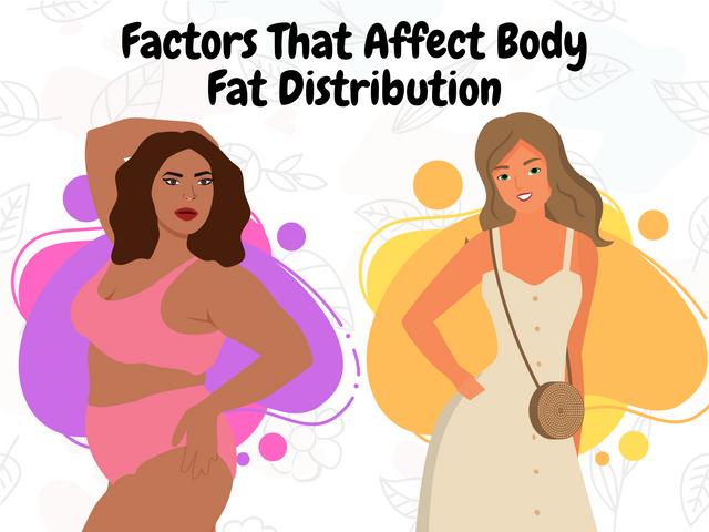 Factors-That-Affect-Body-Fat-Distribution