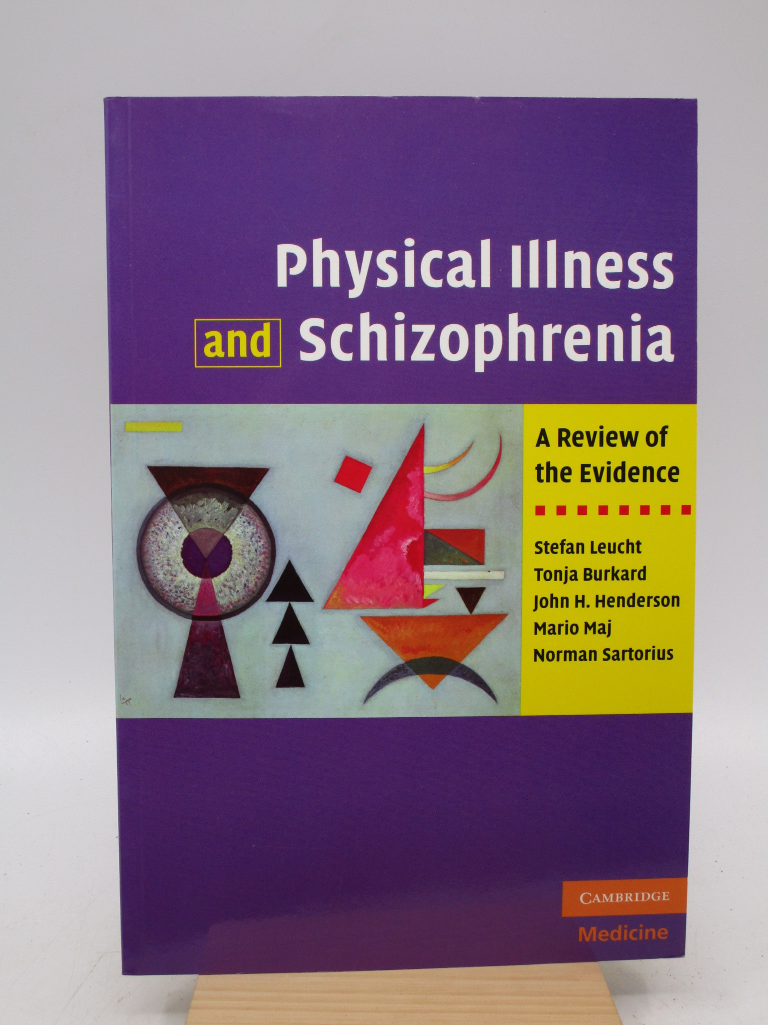 Image for Physical Illness and Schizophrenia: A Review of the Evidence (First Edition)