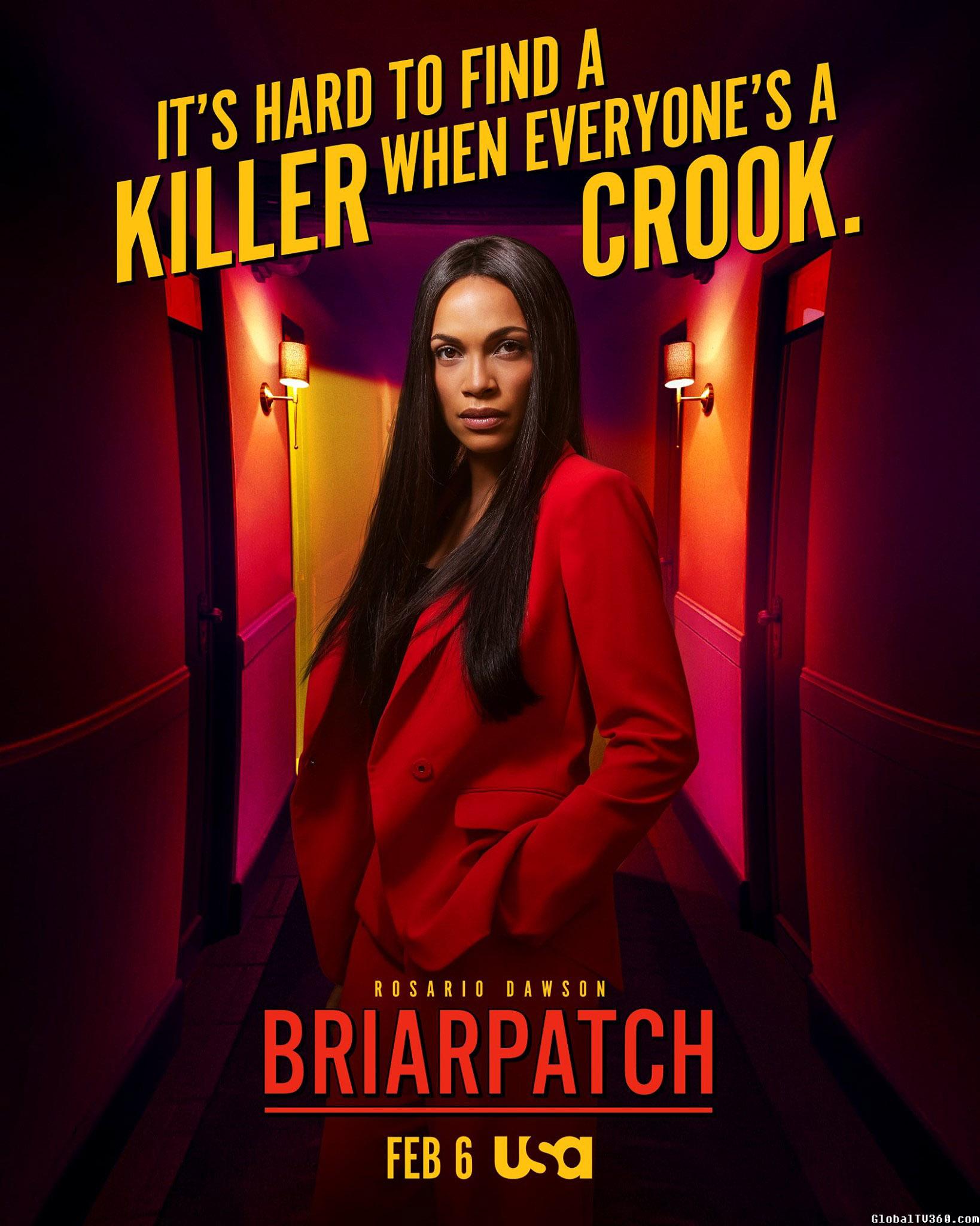2020年冬春季档新剧 荊棘之路 Briarpatch 第1季 官方海报、官方预告及人物设定剧照
