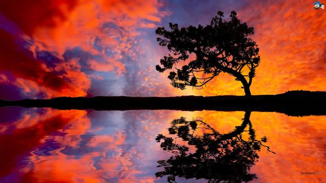 sunset-169a.jpg