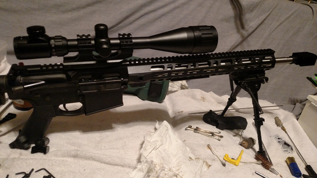AR-10-cleaning-day