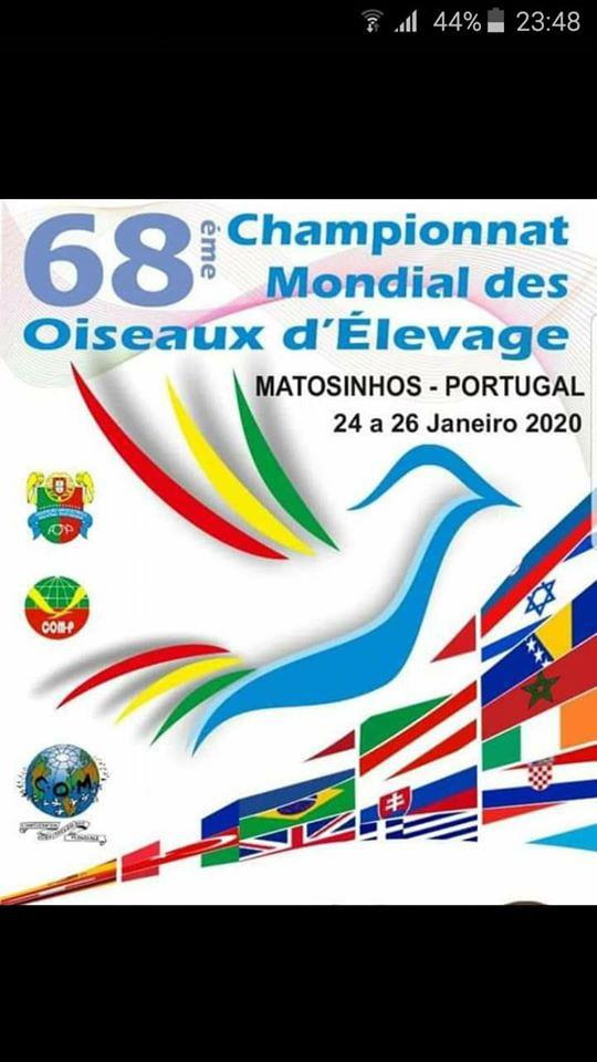 68 Mundial de Ornitologia Matosinhos 2020