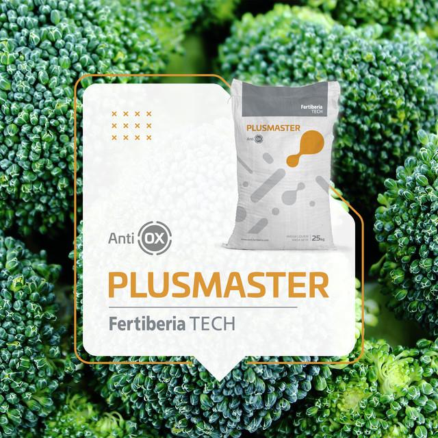 Presentacio-n-producto-Brocoli-PLUSMASTER