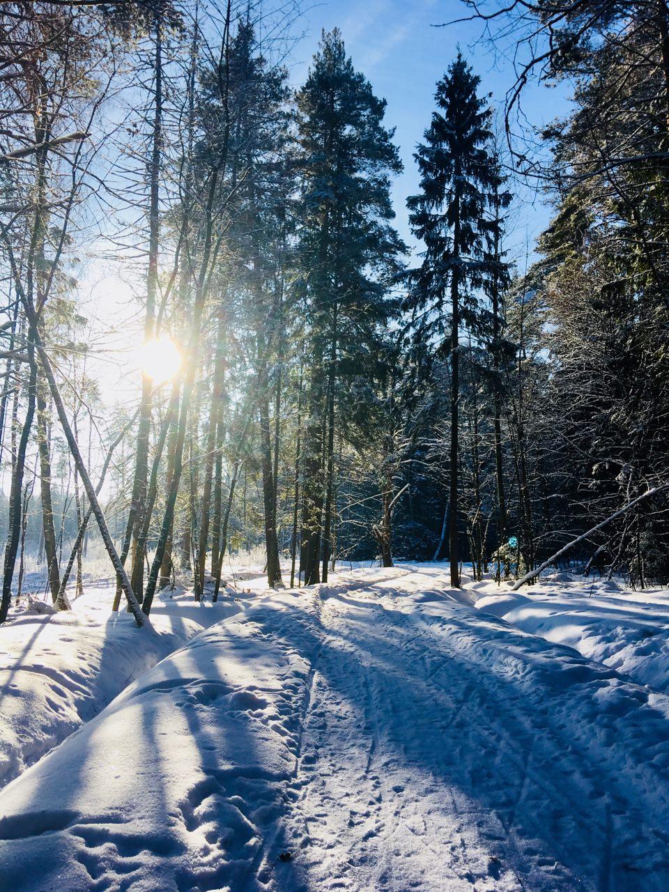 Главная дорога зимы