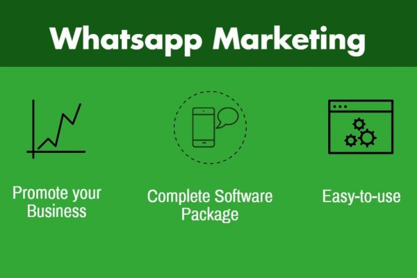 Selling - BULK Whats App sending software + Unlimited contact import