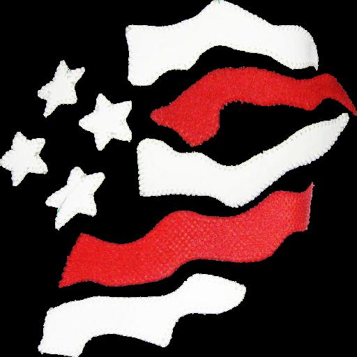 512-x-512-TNA-Flag-Angle-2.png