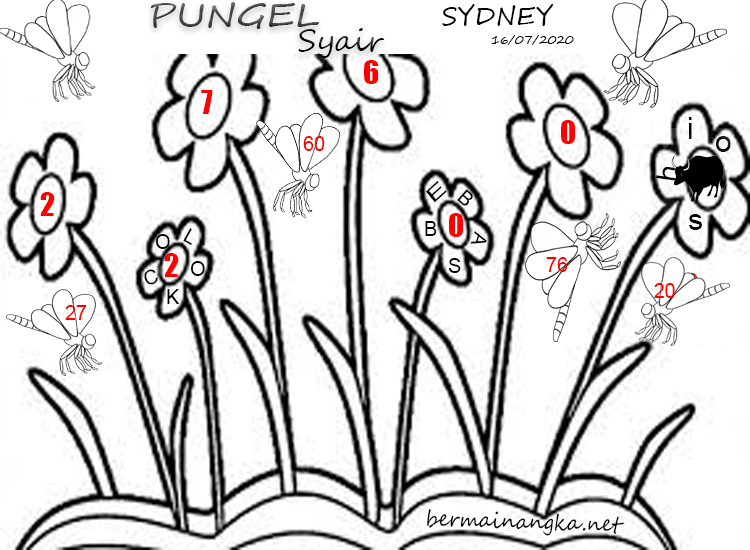 PUNGELSYAIR-SYDNEY-16