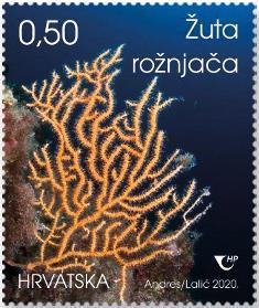 2020. year HRVATSKO-PODMORJE-IV-uta-ro-nja-a