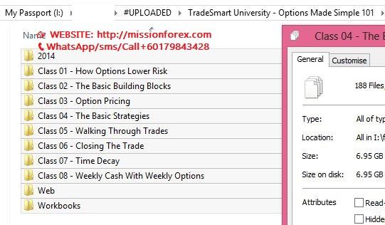 TradeSmart University - Options Made Simple 101