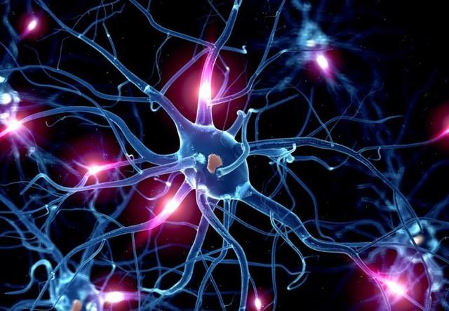 Neuron-image