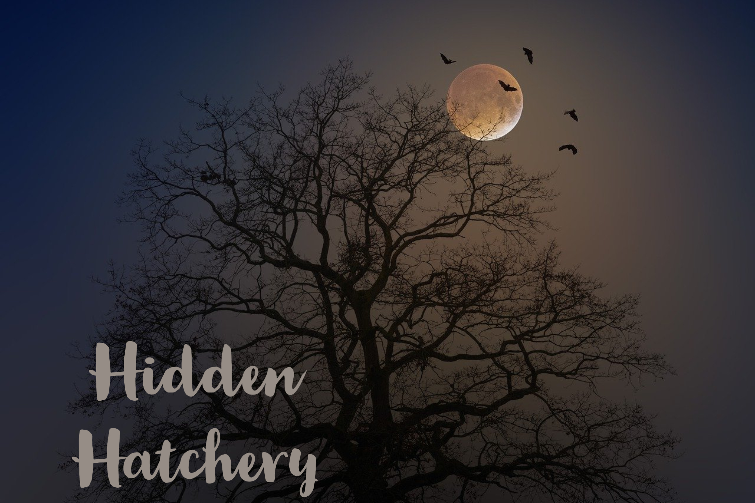Hidden-Hatchery.jpg