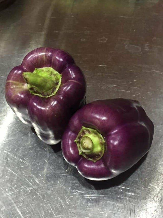 Фиолетовые перцы