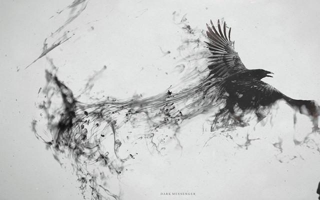 General 2560x1600 raven digital art monochrome birds animals artwork ink simple background white background
