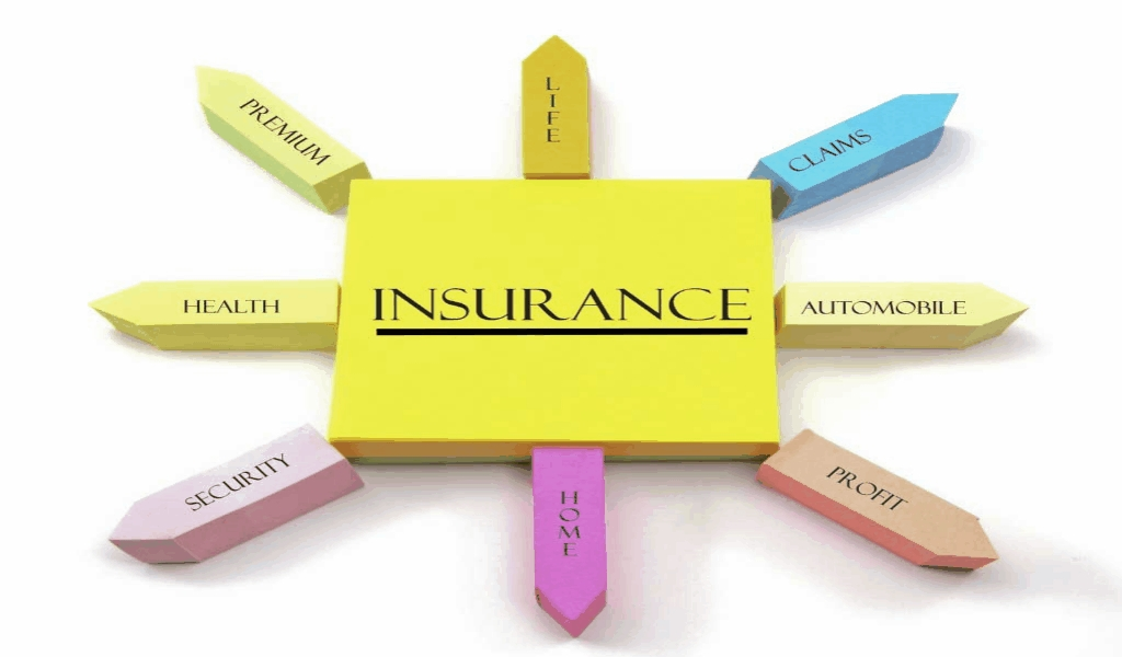 Insurance Company Features