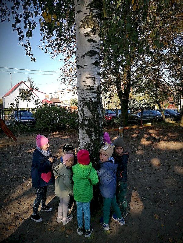 Ekolog-i-s-wie-to-drzewa-211.jpg