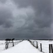 4284337-schneewolken-ueber-dem-deich-1520007061