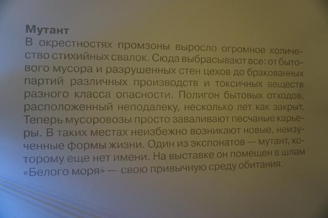 DSC09647.jpg