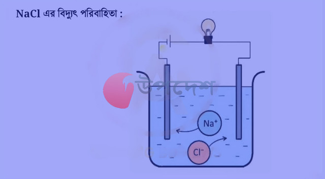 SSC 8th Week Chemistry Assignment