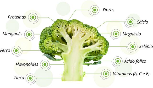 fotos-para-site-B-Foto-3-Infografico-propriedades-brocolis