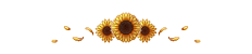 https://i.ibb.co/19rQwJ2/sunflower-divider-f2u-by-chlorophylia-ddayzu6-fullview.png