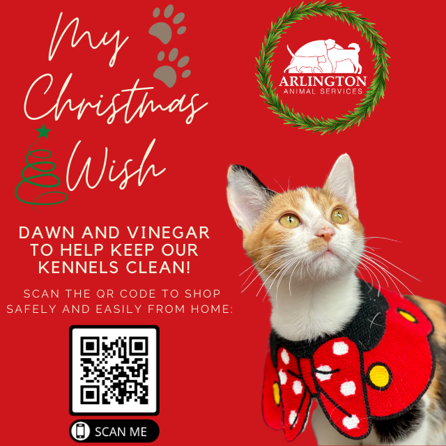 Animal-Services-2020-Angel-Tree-047.png