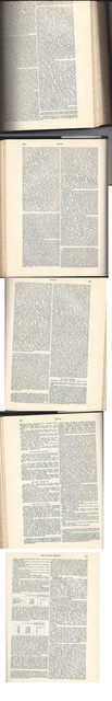 Negro-section-of-Encyclopedia-Britanica-1904-New-Warner-Edition