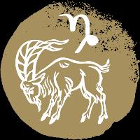 icon-rashi-capricorn-makara