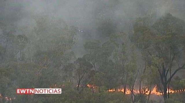 Incendios-Forestales-Australia-060120
