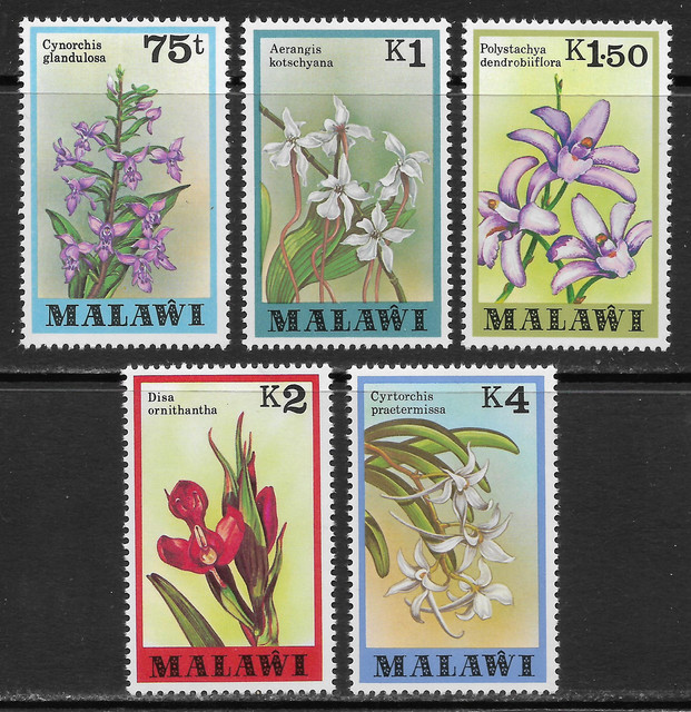 O Malawi 315