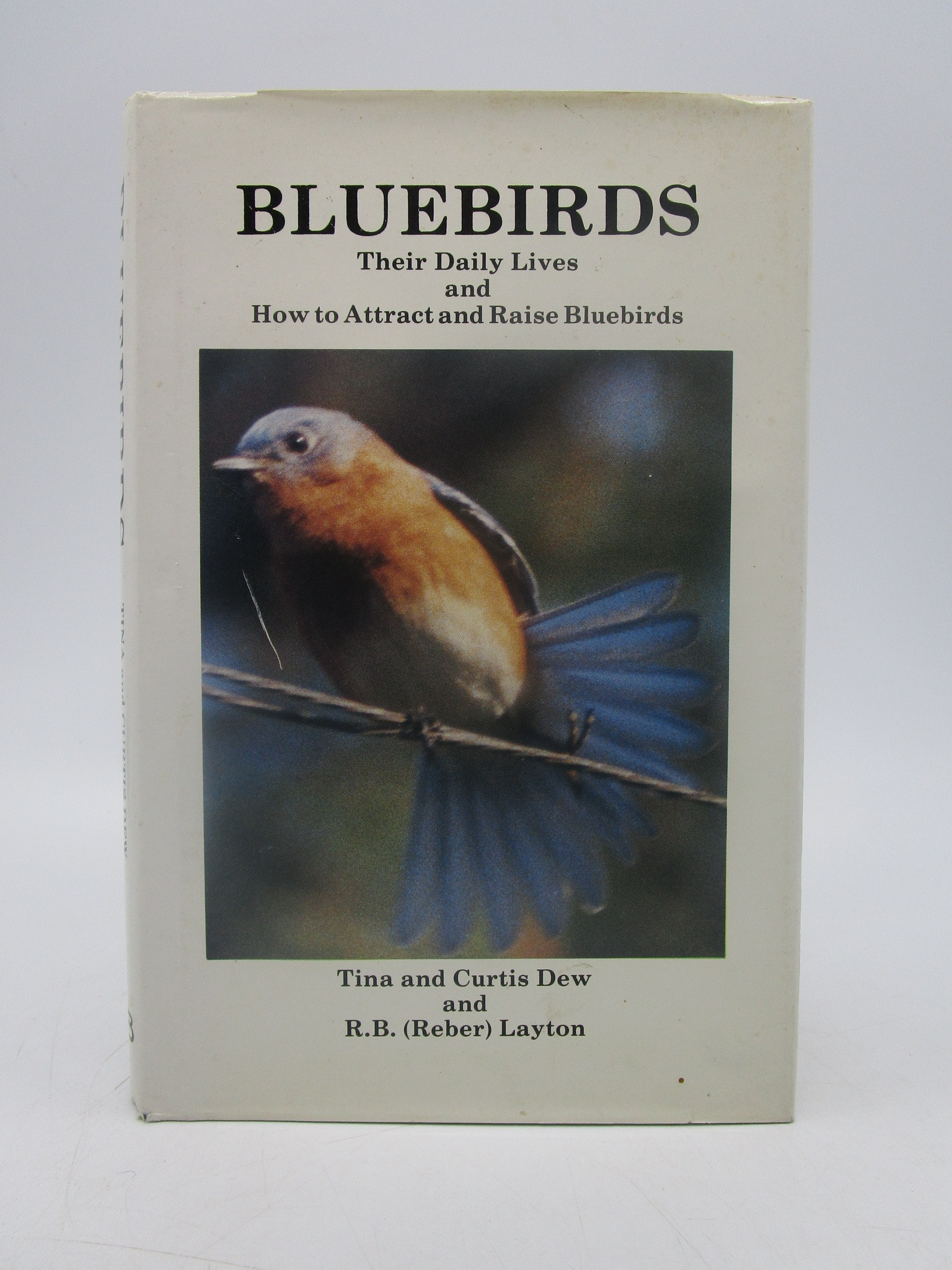 Image for Bluebirds: Their Daily Lives and How to Attract and Raise Bluebirds (First Edition)