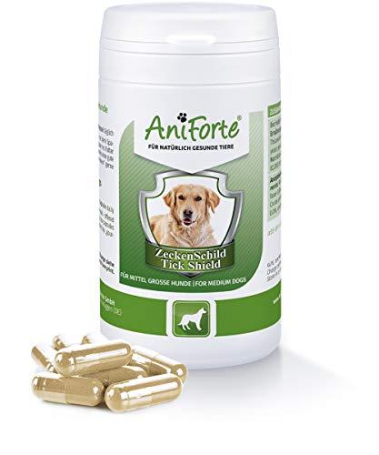 AniForte Thick Shield para Perros (10-35kg) 60 cápsulas. Producto 100% natural. Complejo de Vitamina B que Actúa como Escudo Anti-Garrapatas y Parásitos.