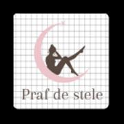 Praf-de-stele-logo-mic